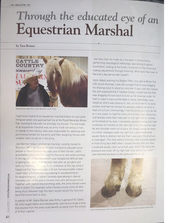 Writeup in Horse Country magazine - page 2