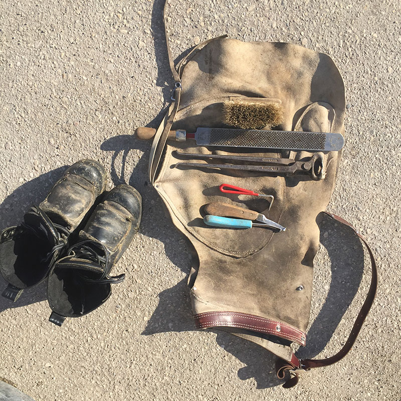 Required Tools: Work Boots with arch and toe protection, farrier's apron, hoof knife, hoof pick, nippers, rasp, brush